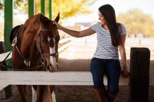 terapia asistida con animales el psicologomas barato . es